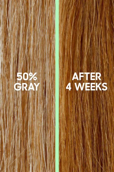 best home hair color for gray best at home hair color top box hair dye brands