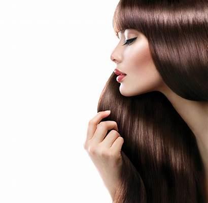 Parlour Transparent Hairdressing Salon Woman Styling Cabelo