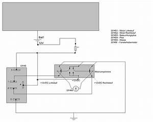 Vw Polo 9n Fensterheber Schaltplan