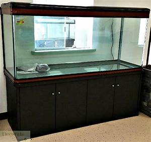 Aquarium L Form : 200 gallon aquarium bing images ~ Sanjose-hotels-ca.com Haus und Dekorationen