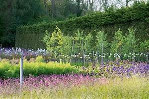 Chelsea Flower Show 2018 : chelsea flower show 2018 preview plant grower mark straver the english garden ~ Frokenaadalensverden.com Haus und Dekorationen