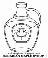 Maple Syrup Coloring Canada Printable Canadian Clipart Jug Tree Drawing Bottle Template Leaf Diagram Sketch Map sketch template
