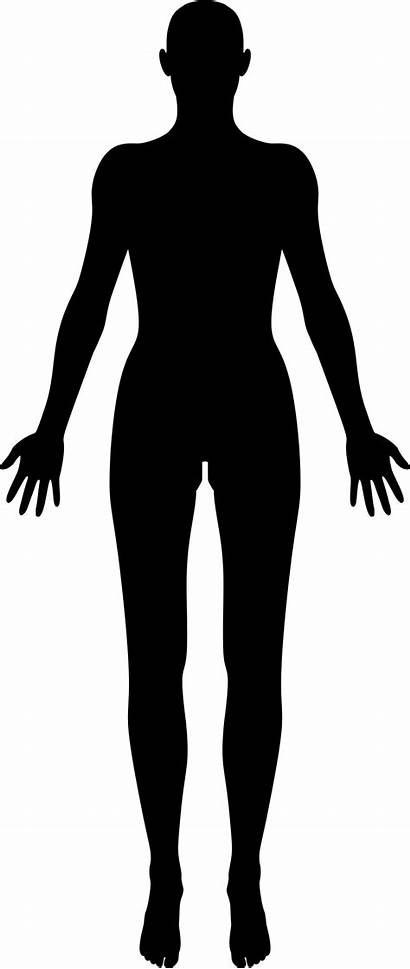 Silhouette Female Icons Human Transparent Clipart Pngio