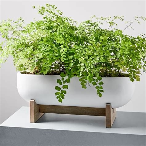 Outside Window Sill Planter by Pomona Windowsill Planter West Elm