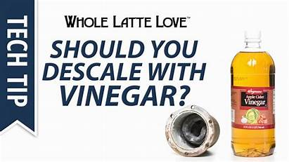 Does Mean Prime Keurig Positions Basketball Descale