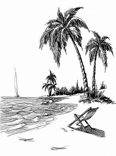 Beach Drawing Sketch Palm Landscape Tree Line