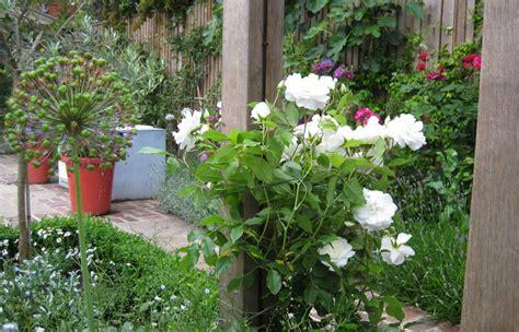 diana milner garden design garden at kew