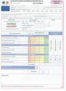 Déclaration De Perte Du Permis De Conduire : certificat d 39 examen du permis de conduire ~ Medecine-chirurgie-esthetiques.com Avis de Voitures