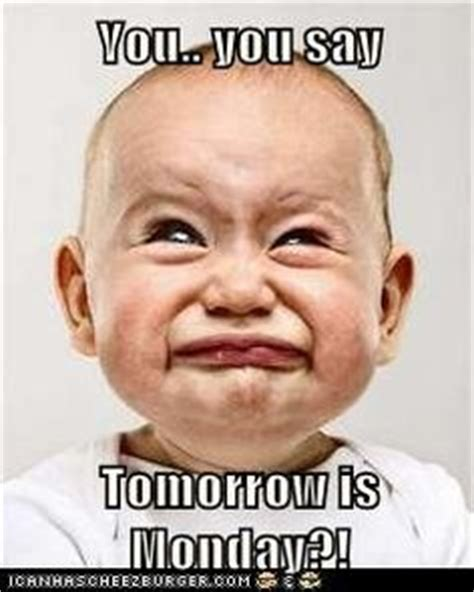 Its Monday Tomorrow Meme - tommow is monday on pinterest mondays funny images and funny monday quotes