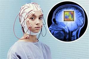 Tech News Et Test : science news darpa funding human test of 39 mood changing brain implant 39 daily star ~ Medecine-chirurgie-esthetiques.com Avis de Voitures
