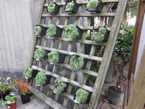 Vertical Garden Diy Ideas by Vertical Gardens Diy