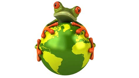 frog  frog graphics planet view eyes hd wallpaper