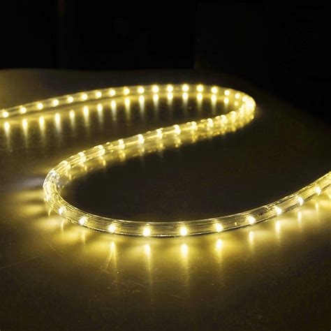 rope lights 150 led rope light 110v 2 wire home