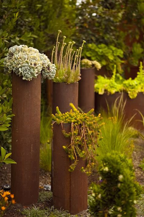 cheap planter ideas  amazing succulent garden