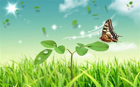 Cool Car Wallpapers For Desktop 3d Butterflies Tattoos by Abstract Nature Butterfly Hd Wallpaper Cool Hd
