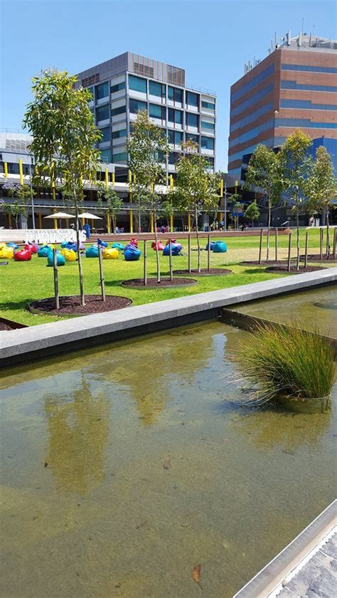 Find out more about caulfield east. Monash Caulfield campus   House styles, Mansions, Melbourne