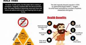 Paleo Diet Vs  Atkins Diet  Which Is Better