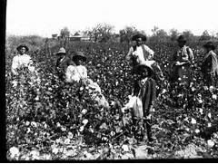 Secret Life of the American Teenager Slavery in 1800s - YouTube  Slavery In The South