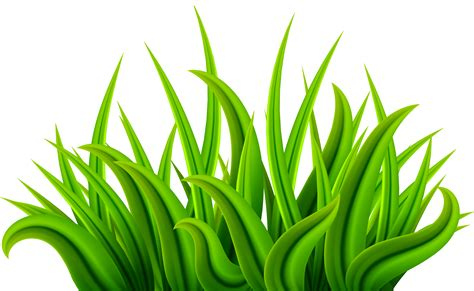 green grass clipart grass green png clip image gallery yopriceville