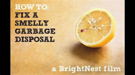 how to fix sink disposal how to fix a smelly garbage disposal a brightnest film