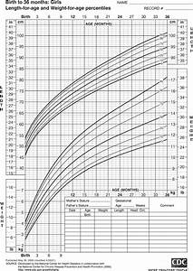 Growth Chart 0 36 Months Hillside Average Growth Of A Toddler