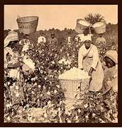 SLAVES  EX-SLAVES  and CHILDREN OF SLAVES IN THE AMERICAN SOUTH  1860      Slavery In The South