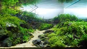types of aquariums