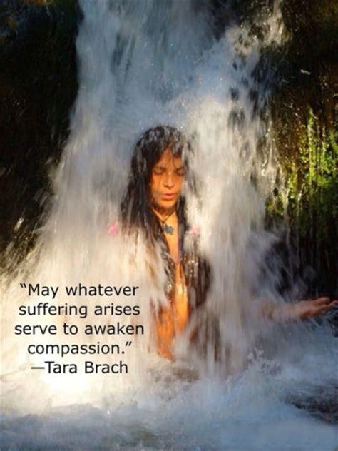 suffering arises serve  awaken compassion