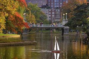 Boston Public Garden Photograph by Joann Vitali