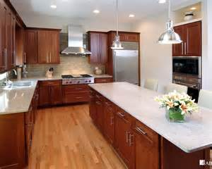 transitional kitchen design ideas transitional kitchen beautiful homes design