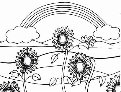 Coloring Easy Pages Adults Sunflowers