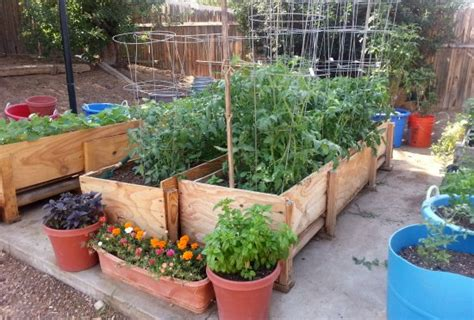 Gardening In Small Spaces  Container Gardening One