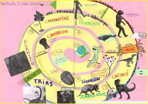 evolution des organismes et histoire de la terre cours