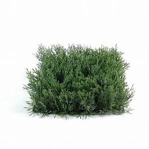 Mini Plante Artificielle : mini plante artificielle prix achat vente en ligne ~ Teatrodelosmanantiales.com Idées de Décoration