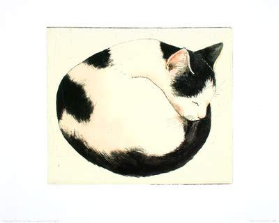 cat pictures including cat art cat tattoos  cat