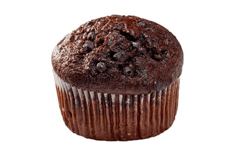 double chocolate chip muffins fundraising ideas otis