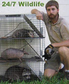 washington dc animal control pest critter wildlife