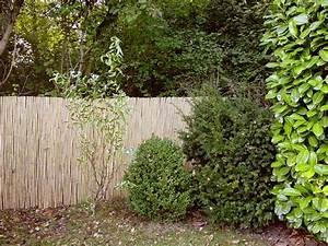 Schöner Sichtschutz Für Den Garten : der perfekte sichtschutz f r ihren garten materialien angebote ~ Sanjose-hotels-ca.com Haus und Dekorationen
