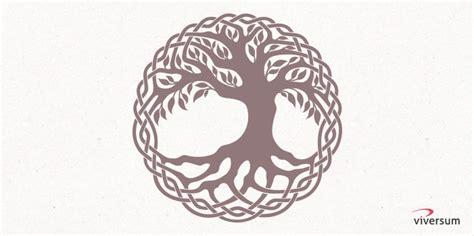 keltischer lebensbaum bedeutung keltische symbole kraft und bedeutung viversum