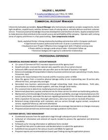 Insurance Account Executive Resume by Valerie L Murphy Resume Commercial Account Manager