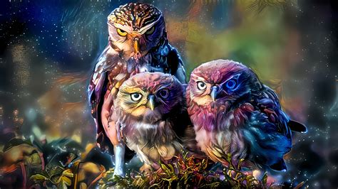 Fantasy owls wallpaper - backiee