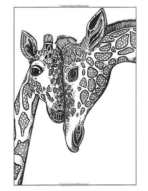 https://www.amazon.com/Adult-Coloring-Book-Relieving