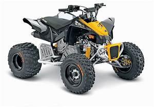 Quad Polaris 49cc
