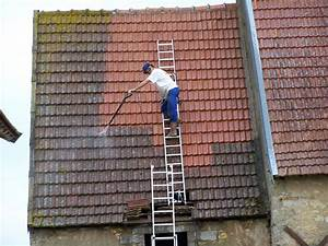 Le demoussage de la toiture,des procédés aux prix Demoussage