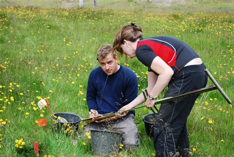 findings  viking archaeological site show power trumping