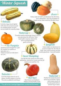 Varieties Of Pumpkins In Australia by 17 Best Images About Csa Recipes Winter Squash On