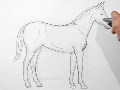 Draw A Real Time Drawing Draw Como Dibujar Mabel De Gravity Falls Kawaii Paso A