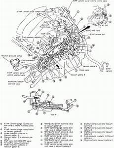 Qx5 Engine Diagram Pdf Di 2020