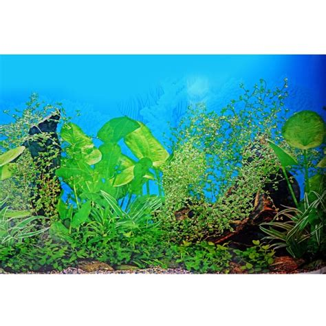 aquarium decor de fond creative aquarium background poster fish tank beautiful sticker decoration background picture