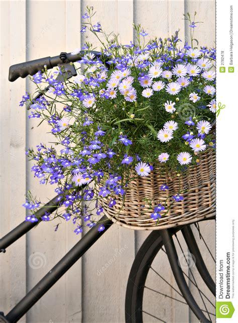 floral bike royalty  stock  image